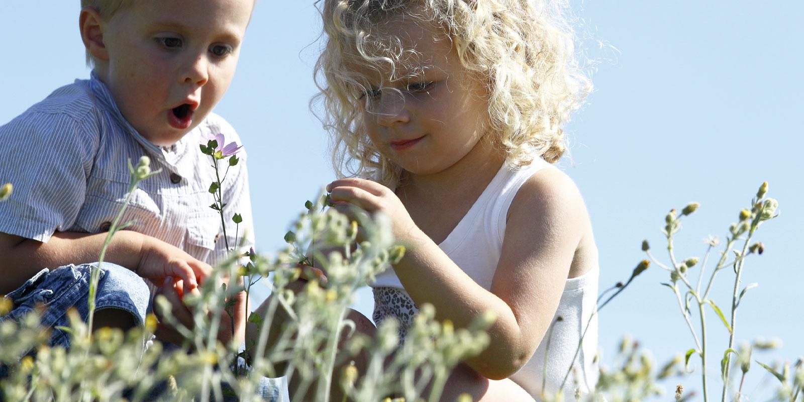 Comment bébé développe son super-pouvoir sensoriel pendant la période sensible du raffinement des sens de Montessori ? avec Wesco